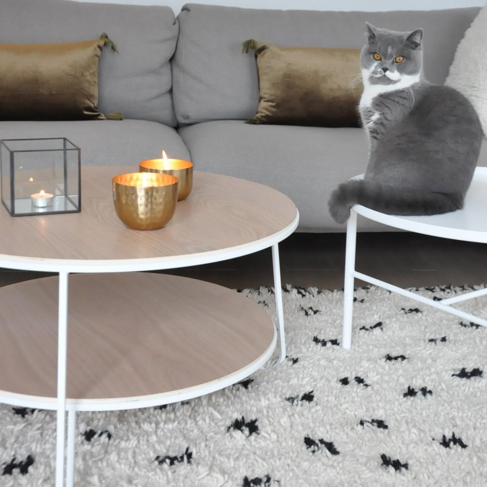 Table Basse Terrarium A Vendre https://www.scandimagdeco/boutique-en-ligne-deco-pour