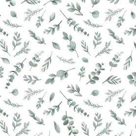 Papier peint motifs Eucalyptus