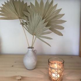 Palme séchée naturelle - le bouquet - 2