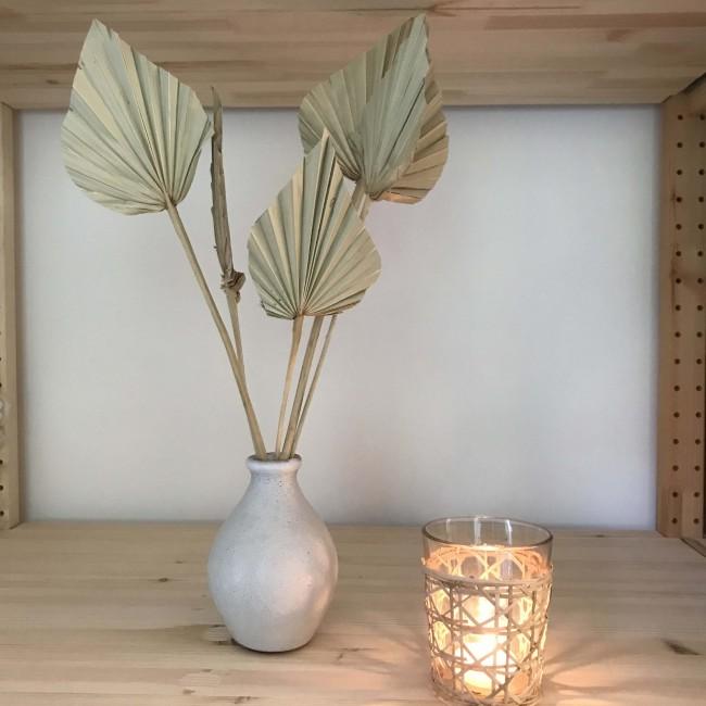 Palme séchée naturelle - le bouquet